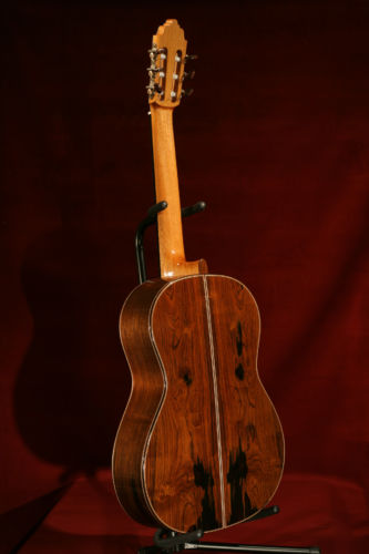 Spruce and Brazilian Guitar