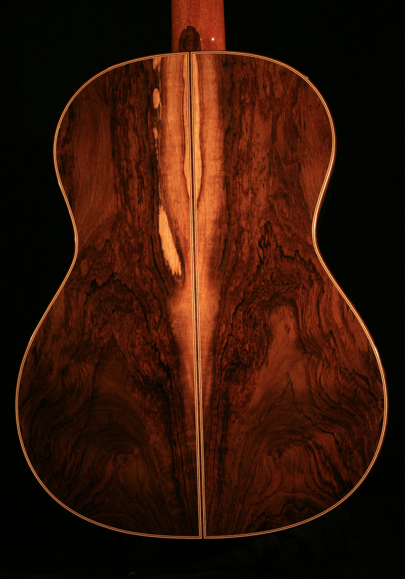 Brazilian Rosewood and Cedar Guitar - 2015 - ``The Piebald Guitar``
