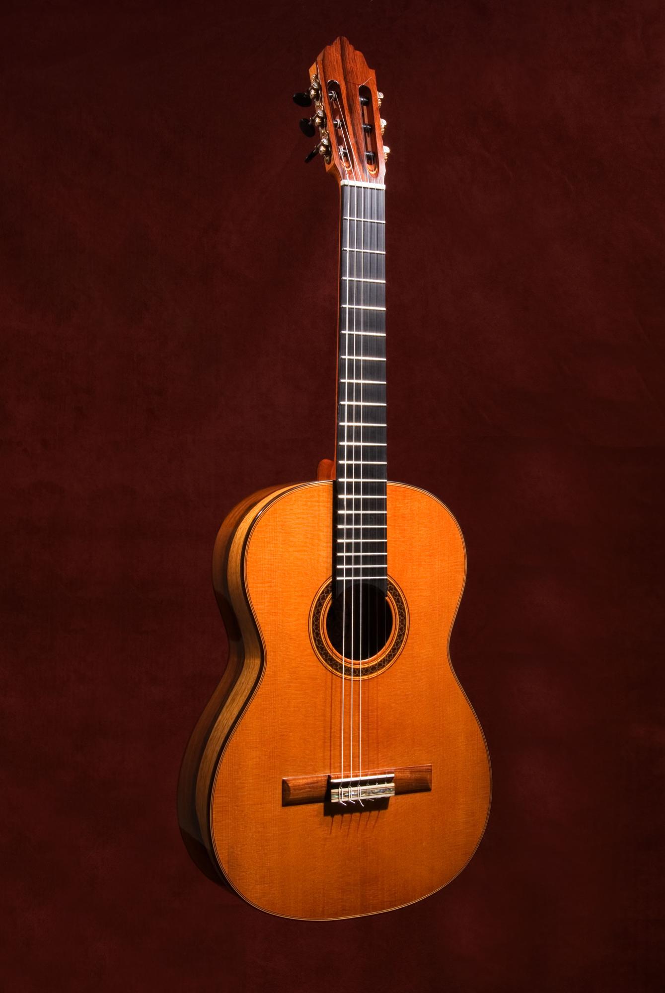 The Sapwood Guitar